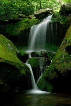 Lower Grotto Falls, Great Smoky Mountain National Park, straddling the border of Tennessee & North Carolina