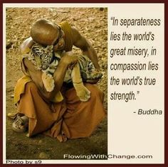 In separateness lies the world's great misery ~ In compassion lies the world's true strength. ⊰♡⊱ Buddha