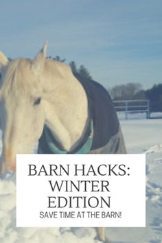 Get prepared!  Winter is just around the corner!  http://www.proequinegrooms.com/index.php/tips/grooming/barn-hacks-8-winter-edition/