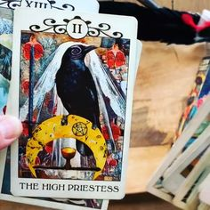 Products featuring the artwork from MJ Cullinane including the award winning Crow Tarot. Hanged Man Tarot, Divine Tarot, Tarot Cards For Beginners, Divination Cards, Tarot Card Spreads, Relationship Gifs, Tarot Card Meanings, Tarot Card Decks, Oracle Cards