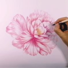 Peonies Discover Floral painting video helen loveday Its been a while since I put paint brush to paper but here it is the first of a new series! Flowers In Vase Painting, Easy Flower Painting, Peony Painting, Acrylic Painting Flowers, Watercolor Painting Techniques, Painting Videos, Acrylic Painting Canvas, Flower Art, Watercolor Paintings