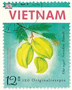 Vietnam: 120 Originalrezepte von Jean-Philippe Mido https://www.amazon.de/dp/3831023328/ref=cm_sw_r_pi_dp_x_xhfuyb9ZF1N74