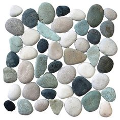 Pebble Tile Classic Pebble Random Sized Natural Stone Pebble Tile in Multi