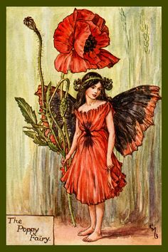The Poppy Fairy by Cicely Mary Barker from the 1920s. Quilt Block of vintage fairy image printed on cotton. Ready to sew. Single 4x6 block $4.95. Set of 4 blocks with pattern $17.95.