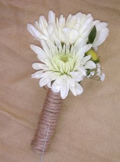 Here's an alternative to a spider mum boutonniere (which I do feel will be too large and won't hold up the best)--it's a cushion mum--we could add foliage and other texture to it!