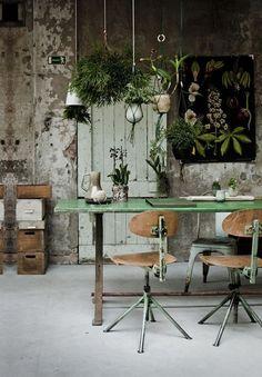 Ideias para decorar o seu home office com plantas.