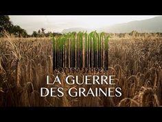 LA GUERRE DES GRAINES [officiel] - Voici un film utile. Un film qui donne les clés pour comprendre comment des multinationales veulent confisquer le vivant. Un film qui donne envie de se battre pour sauver notre indépendance alimentaire. Voir l'article sur LaTéléLibre: http://latelelibre.fr/reportages/doc-...