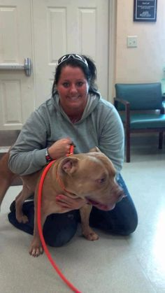 DO NOT DO NOT DO NOT LET THIS WOMAN NEAR AN ANIMAL!! YOU MUST SHARE! This picture appeared on FB as DO NOT ADOPT TO THIS PERSON. Goes by name of Lexi Williams. Offers to adopt or foster dogs then uses them for fighting! BE ON THE LOOKOUT!: Foster Dogs, Gi
