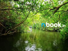 Nbook.in is Keralas's first map based real estate network that provide complete details about land for sale in Kerala. http://www.nbook.in/