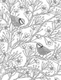 Раскраски антистресс - птицы на сакуре