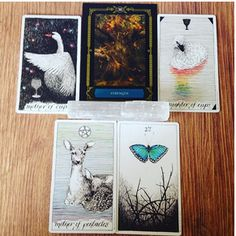 """Real life tarot images from devinastarot instagram """" Mother of Cups """" Daughter of Cups """" Mother of Pentacles """" .."""