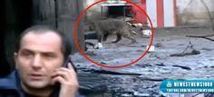 Panika u Tbilisiju: Poplava oslobodila divlje životinje iz Zoološkog vrta | http://www.dnevnihaber.com/2015/06/panika-u-tbilisiju-poplava-oslobodila-divlje-zivotinje-iz-zooloskog-vrta.html