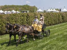 A carriage rides through the course in the carriage