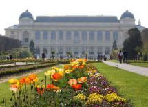 11 Tranquil Spots in Paris: Best Parks and Gardens: Jardin des Plantes: For Educational Strolls