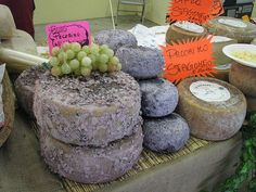 All About Sheep's Milk Cheeses