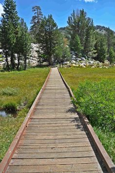 An easy, toddler-friendly hike in Lake Tahoe