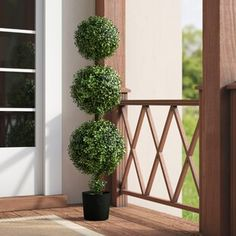 Darby Home Co Triple Ball Boxwood Topiary in Pot Topiary Plants, Topiary Trees, Potted Trees, Porch Plants, Boxwood Tree, Boxwood Topiary, Topiaries, Porch Topiary, Outdoor Topiary