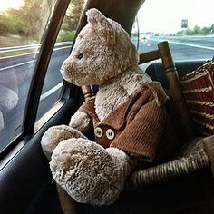 On the road again : Where bear travels in a car, writes in his note-book and makes laugh people in other cars…