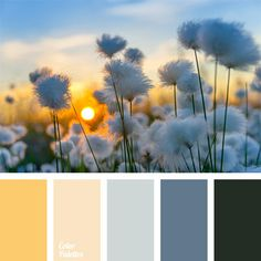 Warm Color Palettes | Page 19 of 56 | Color Palette Ideas