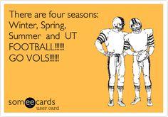 Tennessee Volunteers Football, Ut Football, Tennessee Football, University Of Tennessee, College Football, Funny Football, Sports Humor, Funny Sports, Go Vols