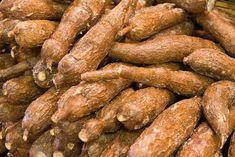 Nigeria to benefit from gates foundation N7.6 bn cassava grant