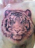 tattoos of tiger heads - Bing Images Tiger Head, Tiger Tattoo, Tattoos, Tigers, Bing Images, Body Art, Animals, Natural Person, Tatuajes