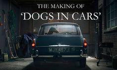 The Making of 'Dogs in Cars' by martin usborne. To order a copy of the book 'Dogs in Cars' at a discounted rate before June 9th go here: http://www.kickstarter.com/projects/1293604819/dogs-in-cars-a-photography-book