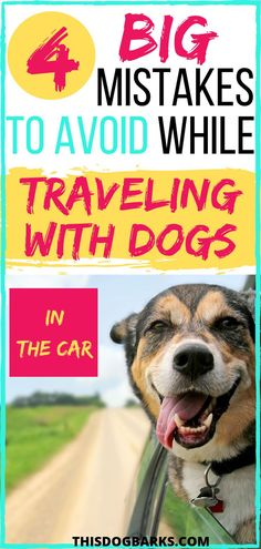 Are you going on a road trip with your dog? Or are you driving with dogs in the car on a daily basis? Learn how to keep your dog safe by avoiding these 4 big mistakes when traveling with dogs in the car. Doodle Your Dog Picks Corgi Breeds, Big Dog Little Dog, Dog Friendly Hotels, Doxie Puppies, Dog Travel, Travel Tips, Road Trip Adventure, Training Your Dog, Brain Training