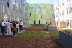 New Bill Encourages Green Roofs, Density | Philadelphia Water Department