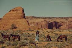 """All the Wild Horses"""