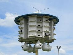 wooden purple martin bird houses