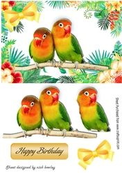 Pair of love birds on a branch in tropical flower frame on Craftsuprint - View Now!