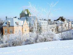 Winter on Avenue Saint-Denis (street)