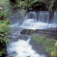 San Jose Costa Rica Things to Do - Tours and Activities in San Jose