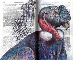 Andean Condor (Vultur gryphus) by Fred Smith