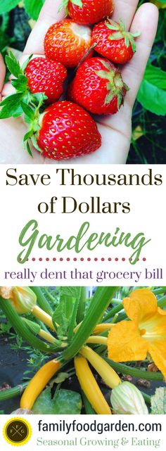 Save Thousands Gardening