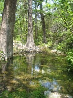 Acacia Ranch, in Hays County, TX. A beautiful TLC Conservation Property. Click on the photo for more info on this property.