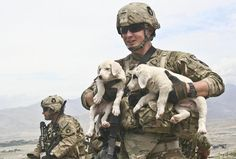 Puppy Lift  US Army Spc. Blake, a combat medic from Clinton, Iowa, with Company D, 1st Battalion, 133rd Infantry Regt, Task Force Ironman, part of the 2nd Brigade Combat Team, 34th Infantry Division, Task Force Red Bulls, holds 2 puppies he found at an observation post in the Aziz Khan Kats Mountain Valley range near Jalalabad, Afghanistan. The puppies have been living with the Afghan National Army Weapons Company, 2nd Battalion, 201st Infantry Corps, which man the Ops that 3rd Platoon…