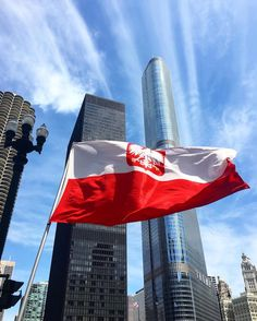 Reppin' my Polish side Constitution Day, Chicago, Polish, City, Followers, Outdoor Decor, Instagram Posts, Flag, Tattoo
