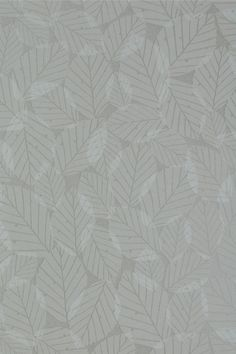Beech Leaves Wallpaper - Pebble SAMPLE