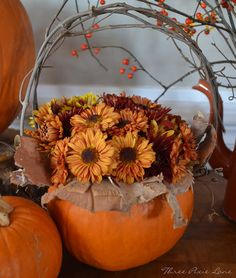 Pumpkin Basket    Hollow out the pumpkin and place a small plastic container inside.  Then,  place some bark, gathered from a River Birch tree, around the sides of the pumpkin.  Some pretty fall mums fill the container.  Two small holes on either side of the pumpkin hold the grapevine handle.