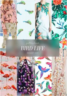 The Patternbank Team bring you the final run down of the Resort 2017 Print Trends alongside some fabulous designs from The Patternbank Online Textile Studi