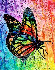 Art Print Butterfly Rainbow Pop Art Splatter Portrait Colorful Bright Edgy Nature Decor or Butterfly Painting, Butterfly Wallpaper, Butterfly Art, Rainbow Butterfly, Rainbow Art, Modern Cross Stitch, Cross Stitch Kits, Rose Art, Nature Decor