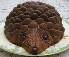 50 Easy Make Animal Cakes for Every Occasion . 50 Easy Make Animal Cakes for Every Occasion … Sarah Ozolins: Hedgehog Cake – out Fancy Cakes, Cute Cakes, Pink Cakes, Hedgehog Cake, Hedgehog Birthday, Cupcake Cakes, Food Cakes, Art Cupcakes, Giraffe Cakes
