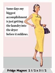 Some days my biggest accomplishment is just getting the laundry into the dryer before it mildews.