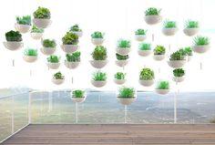 Skyfarm, Future Food, ManuelDreesmann