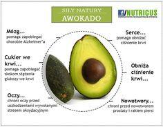 Fruit, Healthy, Food, Design, Meal, Eten, Hoods, Meals