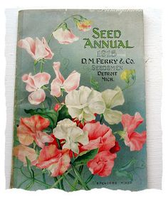 D.M. Ferry and Co. Seedsmen, Detroit MI Spensers Mixed sweet peas 1915