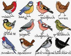 (2) Gallery.ru / Фото #106 - В основном птицы_3/Freebies - Jozephina