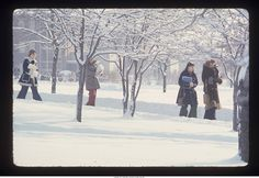 """Ball State University students walking walking on campus in the snow""--To learn more, visit the Ball State University Campus Photographs in the Ball State University Digital Media Repository. Copyright 2013, Ball State University. All rights reserved"